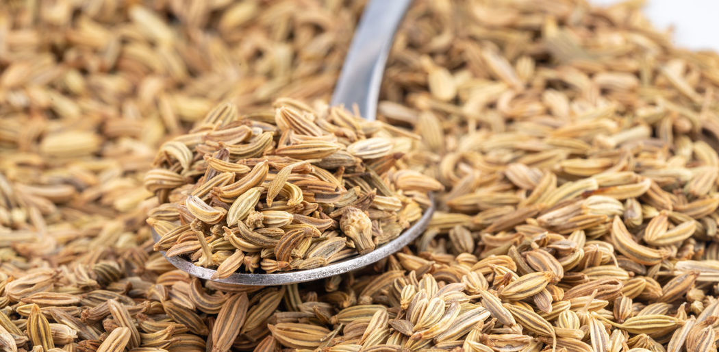 Seed Close-up Cumin Cuminseeds Food Food And Drink Freshness Healthy Eating Ingredient