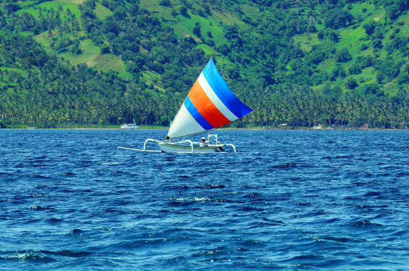 traditional sail boat indonesia Beauty In Nature Day INDONESIA Lombok Nature Nautical Vessel No People Outdoors Rippled Sailboat Scenics Sea Sea View Tranquil Scene Tranquility Tree Water Waterfront Art Is Everywhere Break The Mold