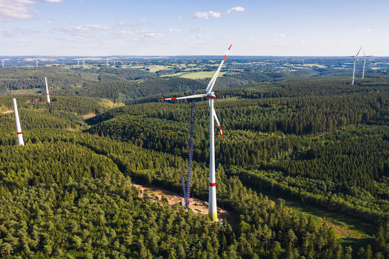 Windmills in forest against sky