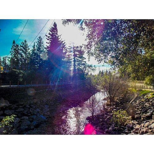 Earthporn Santarosa California Photography sky trees sony