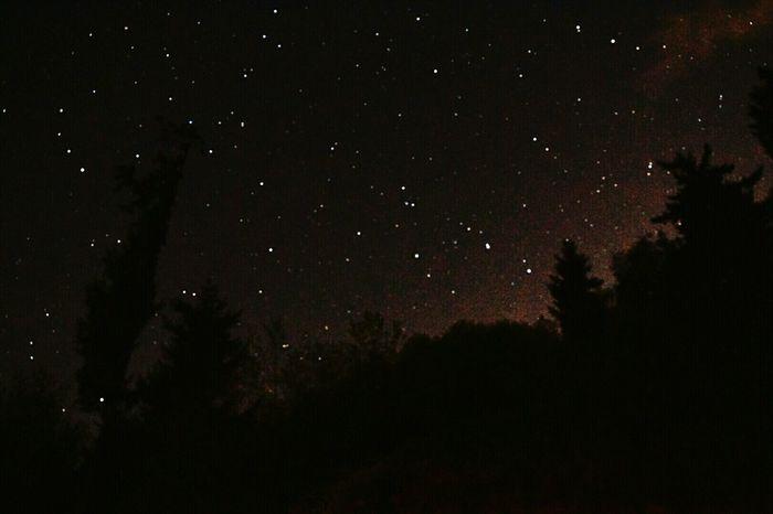 Nightphotography Nightscape Night Lights Night Sky Starry Starry Night Stars Darryn Doyle Daring DeOil Rainier Oregon Astrophotography
