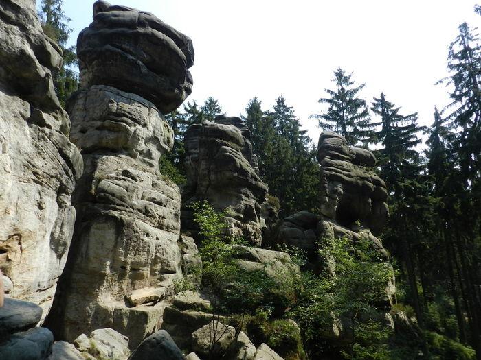 Rock Woods Steny Landscape Tree Czech Republic Forest Rocks Sightsee Stone Nature Czech Mountains