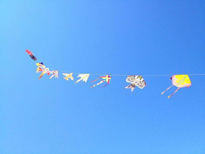 Ten kites Taking Photos Enjoying Life Sky And Clouds Silouhette Taking Photos Sound Of Life AMPt_community Shootermag Kites