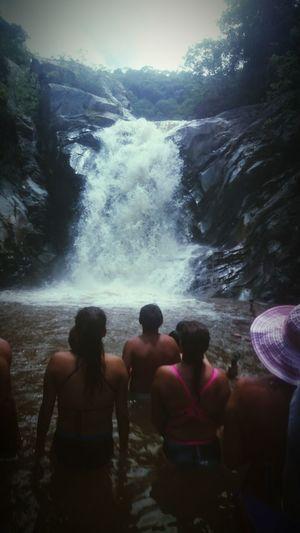 Waterfall Island Admiring Nature's Beauty People Watching