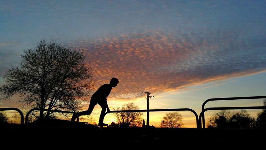 Sport Sunset Sportsman Healthy Lifestyle Athlete Sports Training Only Men Tennis Practicing Silhouette One Man Only Sky One Person Outdoors Adults Only Court Adult Competitive Sport People Taking A Shot - Sport