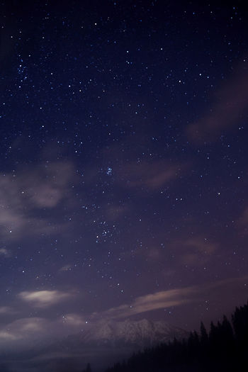 Night sky. Night Lights Nightphotography Wood Astronomy Beauty In Nature Galaxy Milky Way Mountain Mountains Nature Night No People Scenics Sky Space Star - Space Star Field Tranquil Scene Tranquility